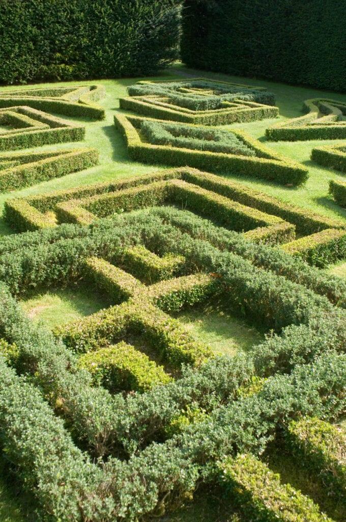 Knot Garden, Antony House
