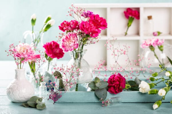 Bouquet of pink carnation in glass vase on light turquoise wooden background. Mothers day, birthday greeting card.
