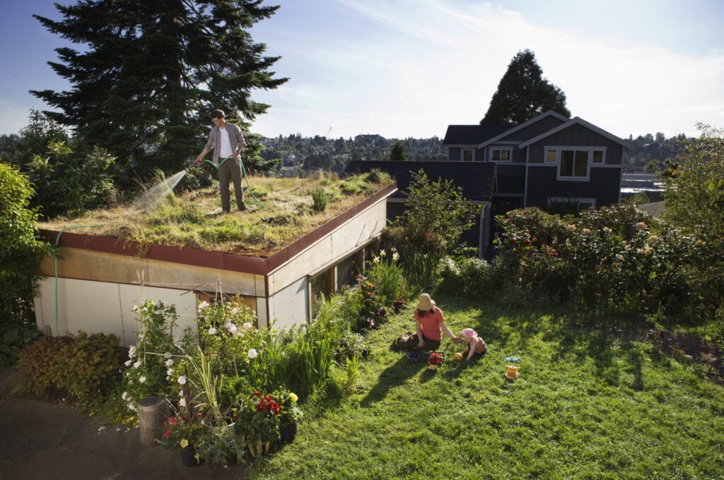 rooftop garden on home