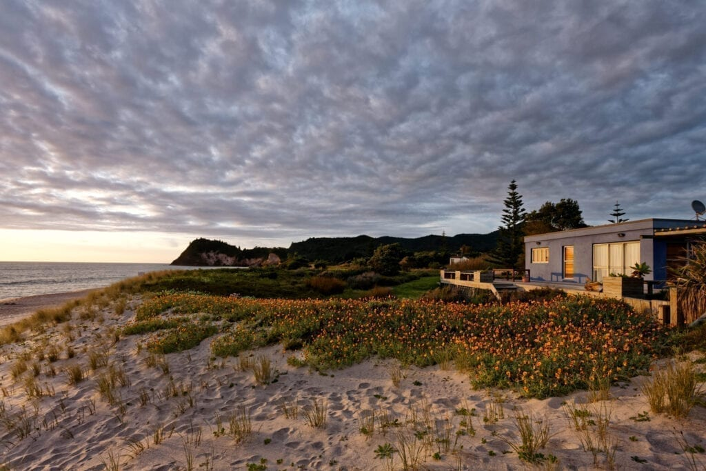 wide angle view of Whiritoa beach in the Coromandel with holiday home and spring flowers