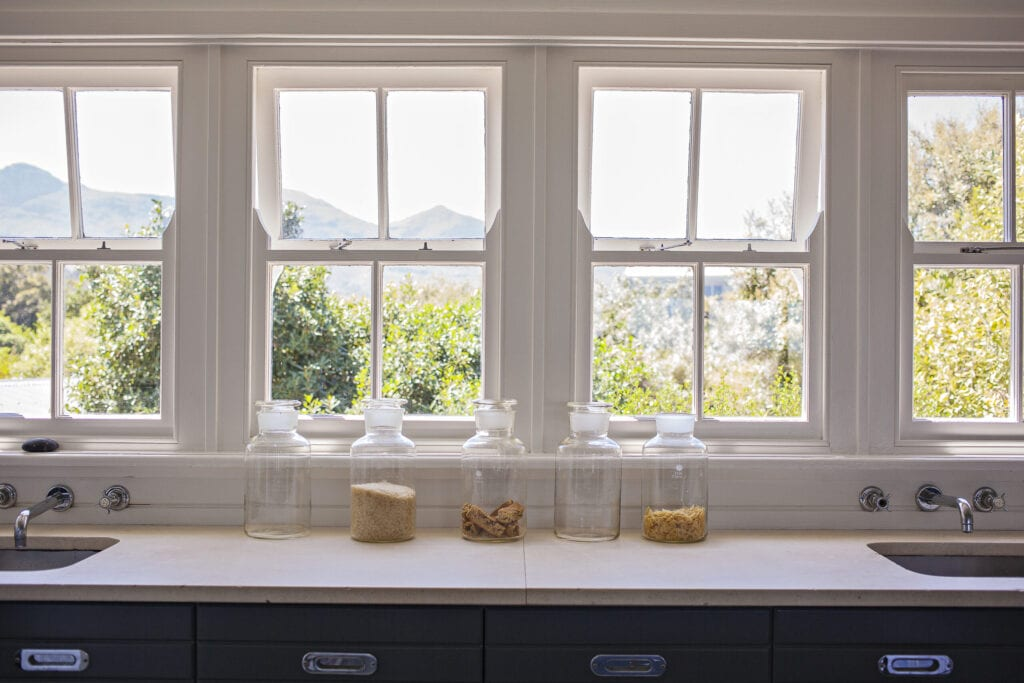 window in kitchen