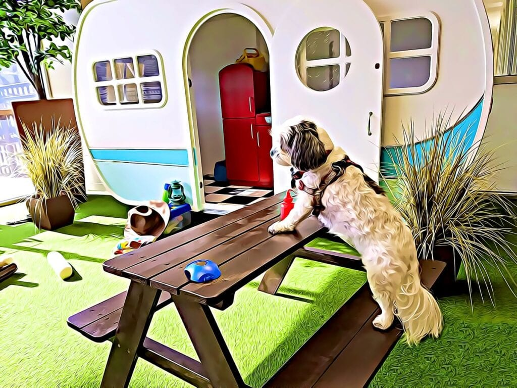 Dog sitting at picnic table in front of small trailer dog house