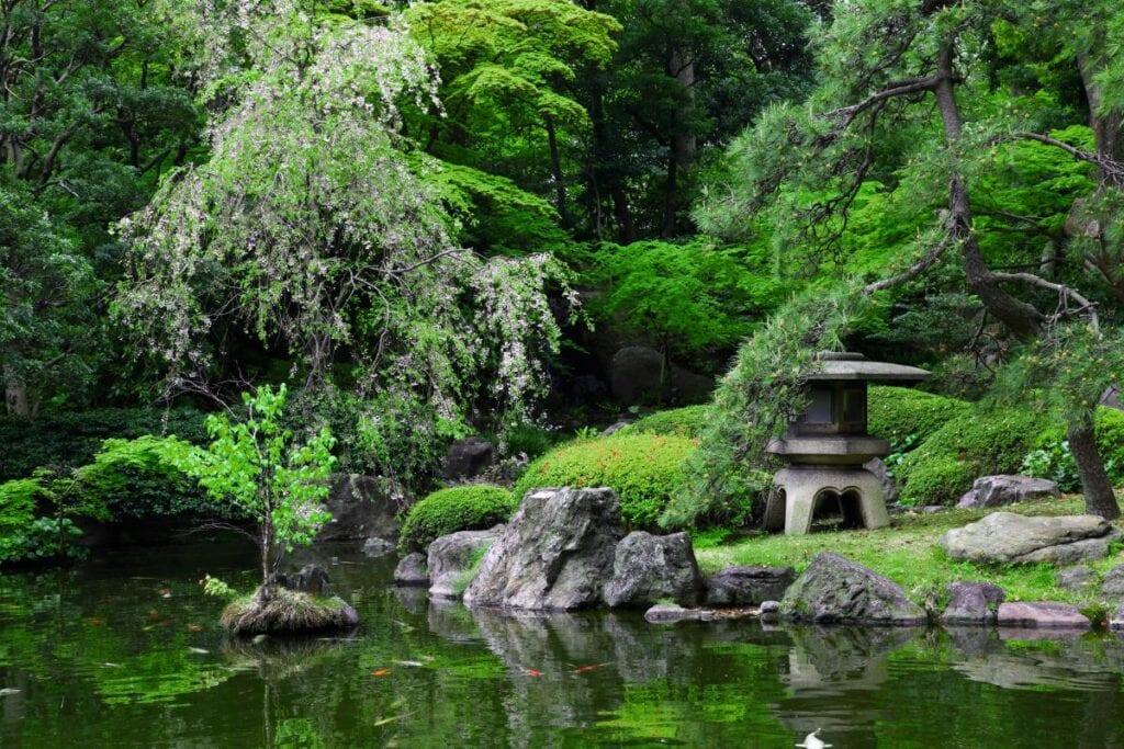 Jardin de mousse et étang de style japonais