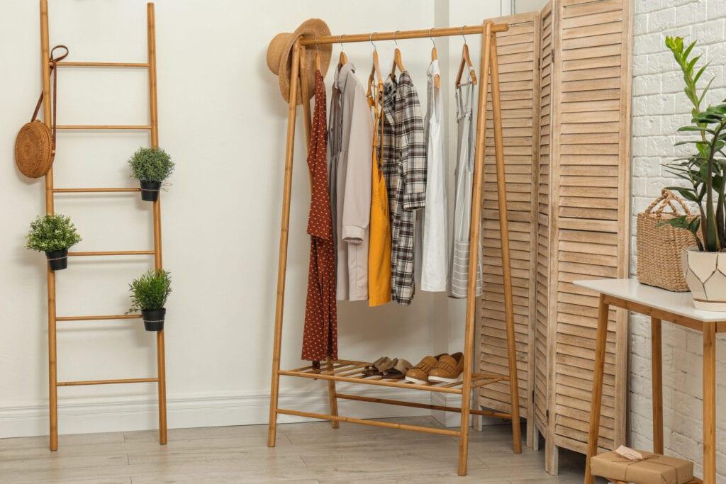 Closet with ladder