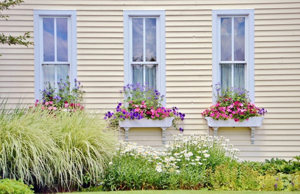 Flower boxes on windows