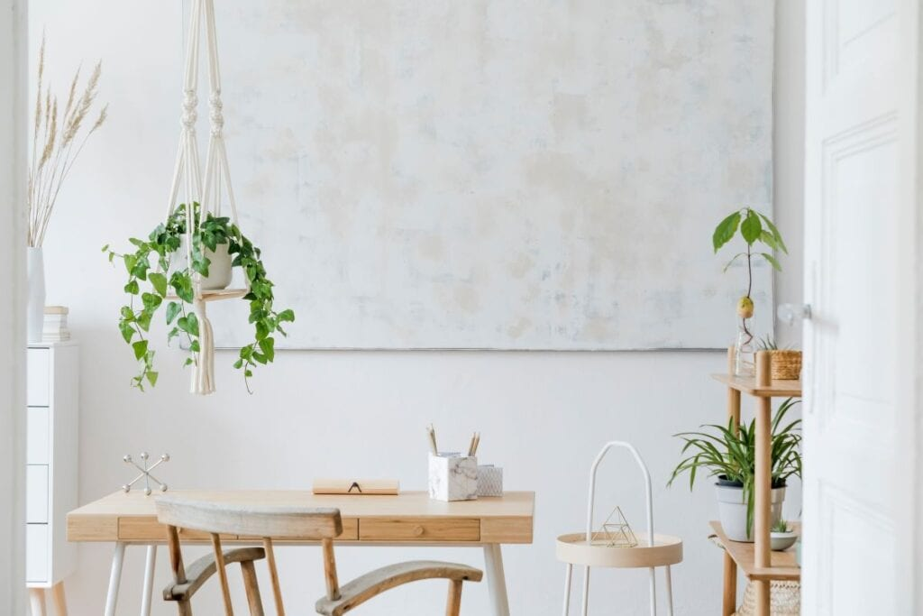 Small wooden desk with house plants on shelves and hanging from ceiling