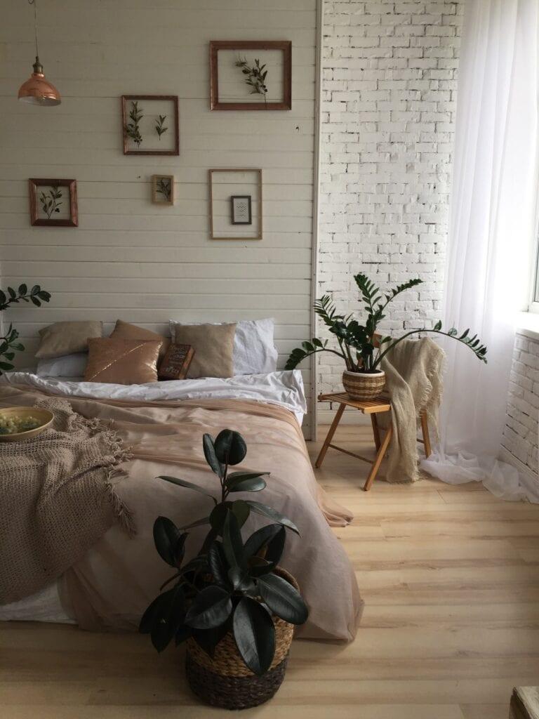 Cozy bedroom with plant