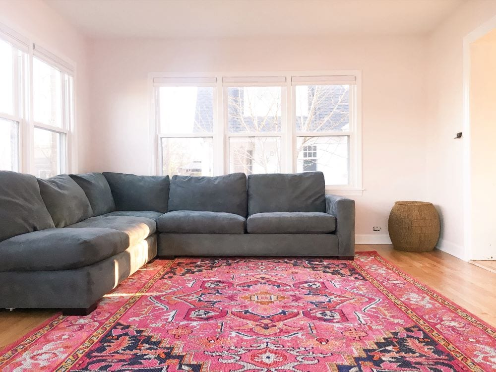 Living room with decorative, patterned area rug