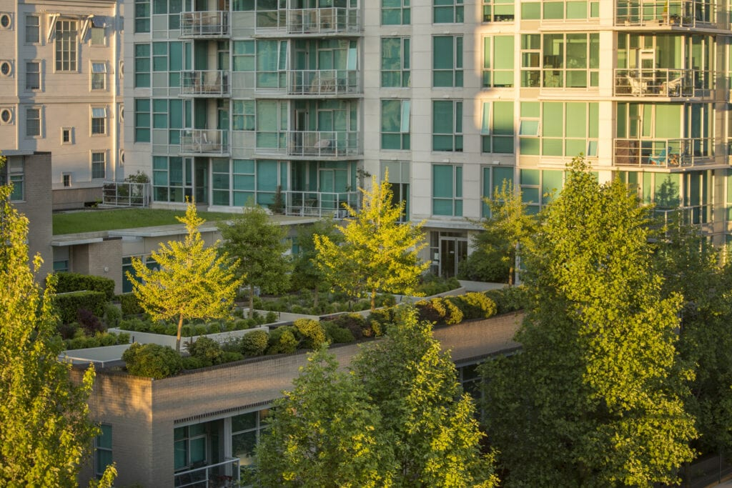 urban green rooftop
