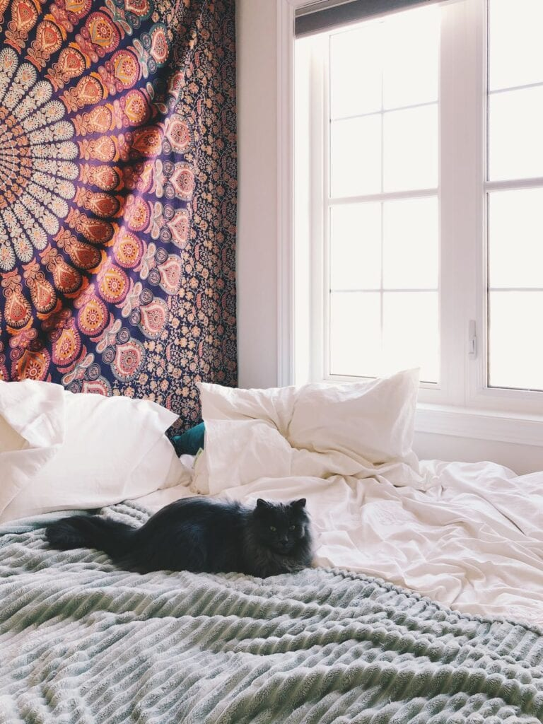 Cozy bedroom decorated with tapestry