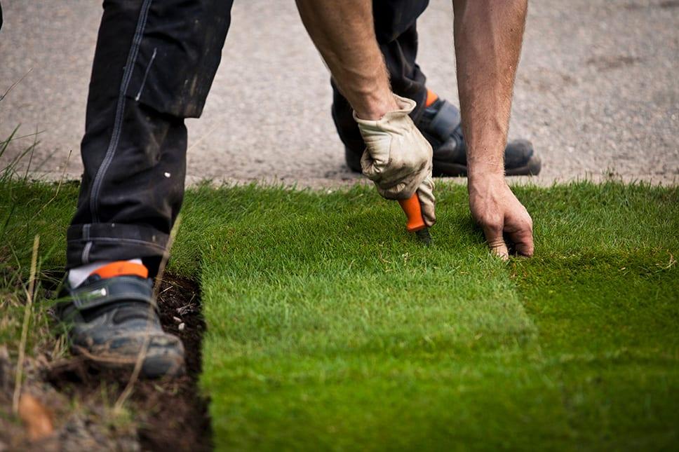 man installing new strip of grass