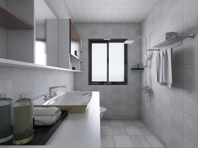Window in shower