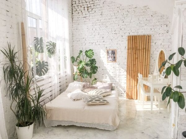 Small bedroom with greenery and plants