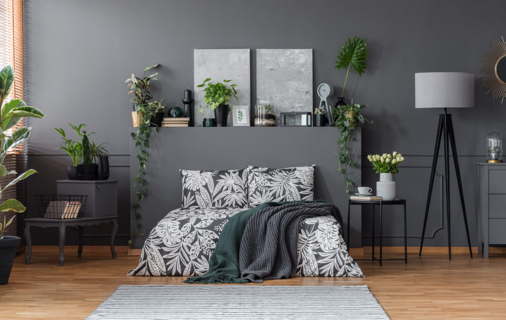 Dark gray bedroom with printed bed comforter
