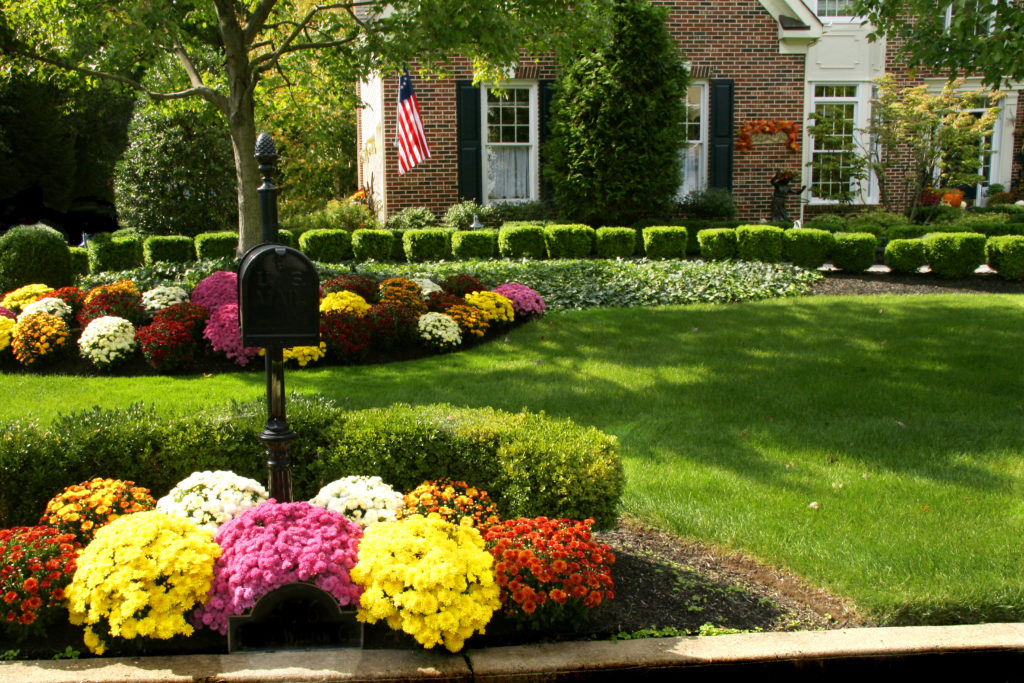 Mailbox surrounded by colorful flowerbed next to green lawn