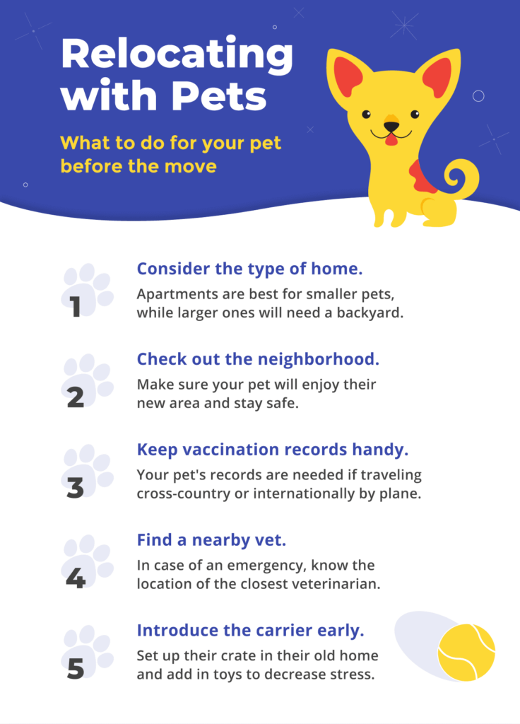 Here are some steps you can take before Moving Day to prepare your pets.