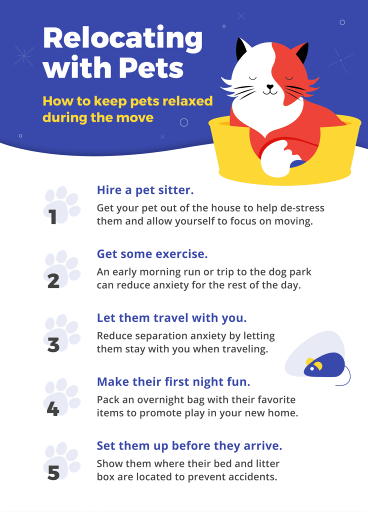 Steps you can take to keep your pets calm and safe during the move.