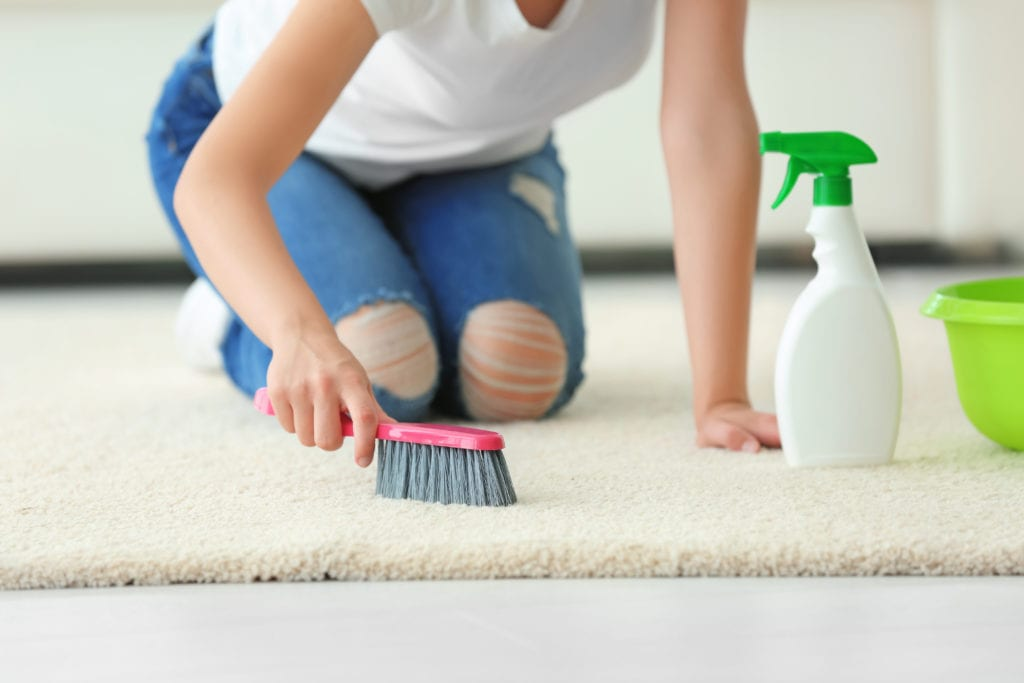 Young woman deep cleans her carpet with cleaning solution and a scrub brush.