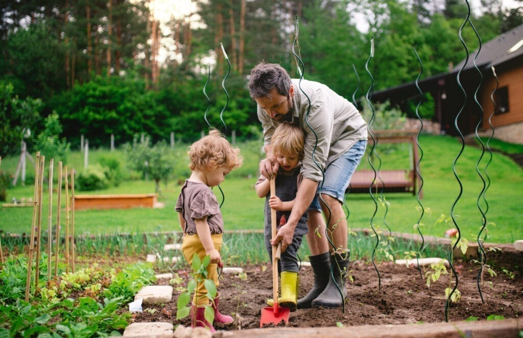 A man with daughter in the garden, planting seedlings.