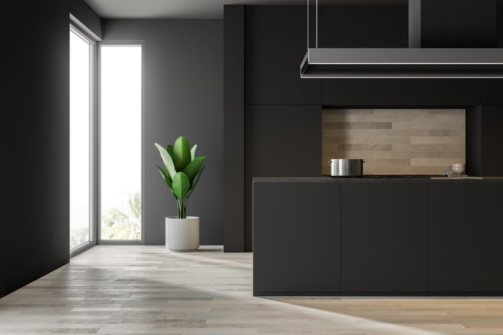 Contemporary black kitchen