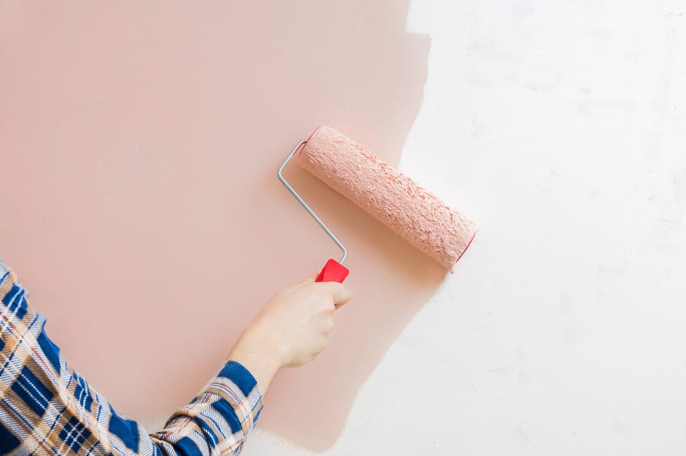 A woman paints her wall a rose color, carefully choosing the right paint sheen.