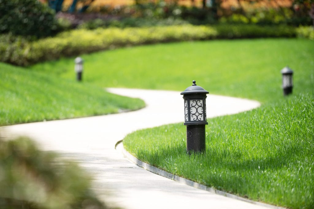 thin metal edging on garden footpath