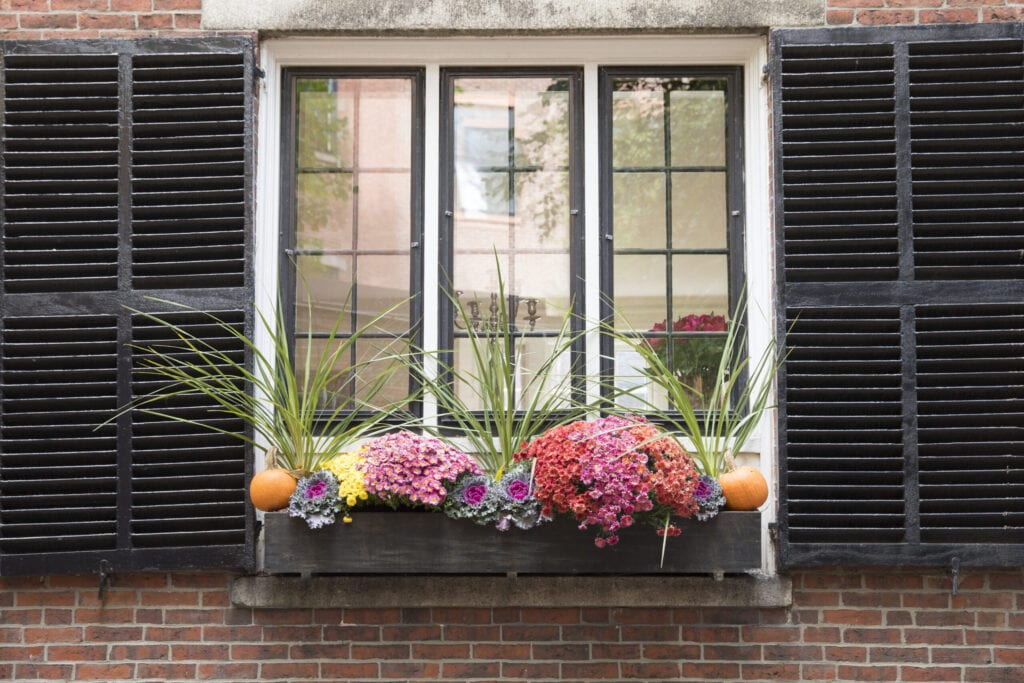 BOSTON, MASSACHUSETTS: Floral window box planter at window with shutters in the Beacon Hill historic district of Boston, Massachusetts, United States. (Photo by Tim Graham/Getty Images)