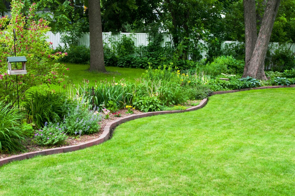 A lush green lawn and flower bed in a backyard, with brick edging