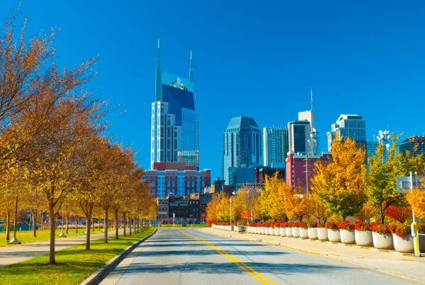 Nashville skyline with fall trees and other plants in the foreground.