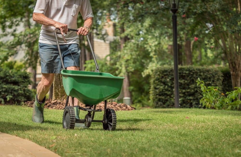 man fertilizing grass