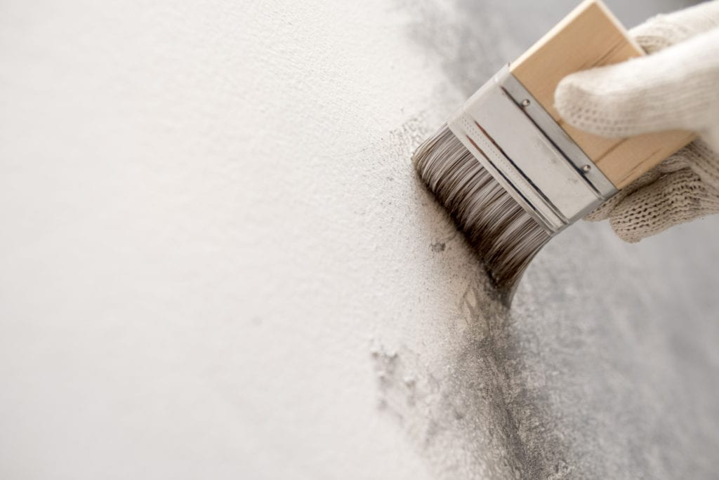 painting concrete wall white