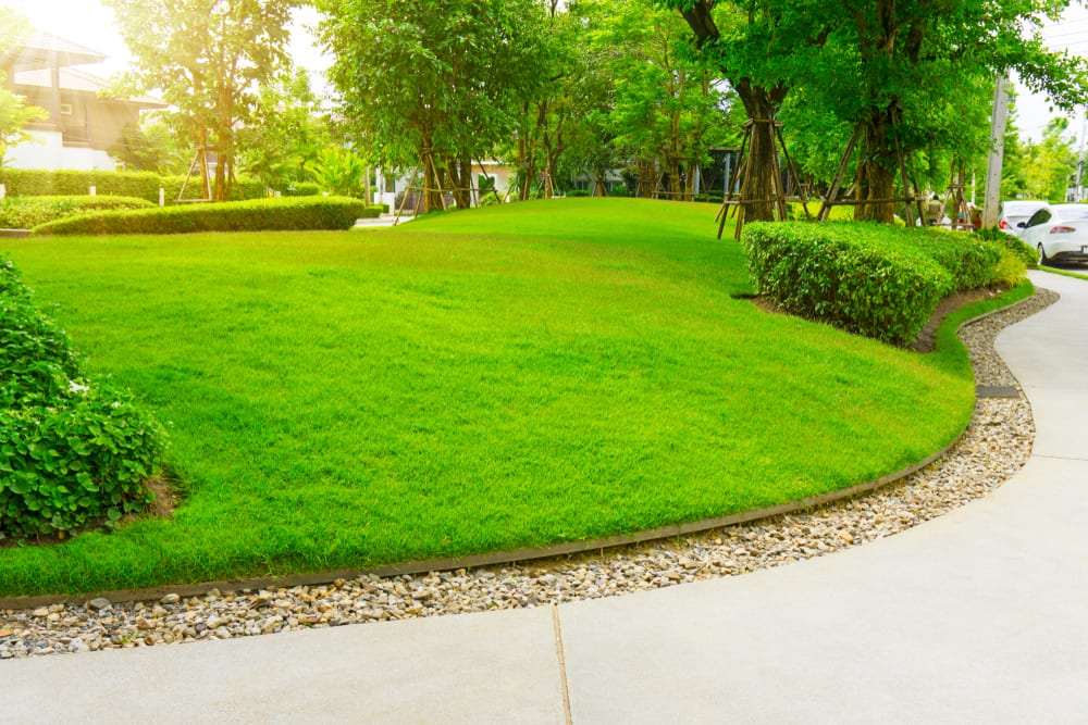 yard layering with gravel, metal edging, and a green lawn