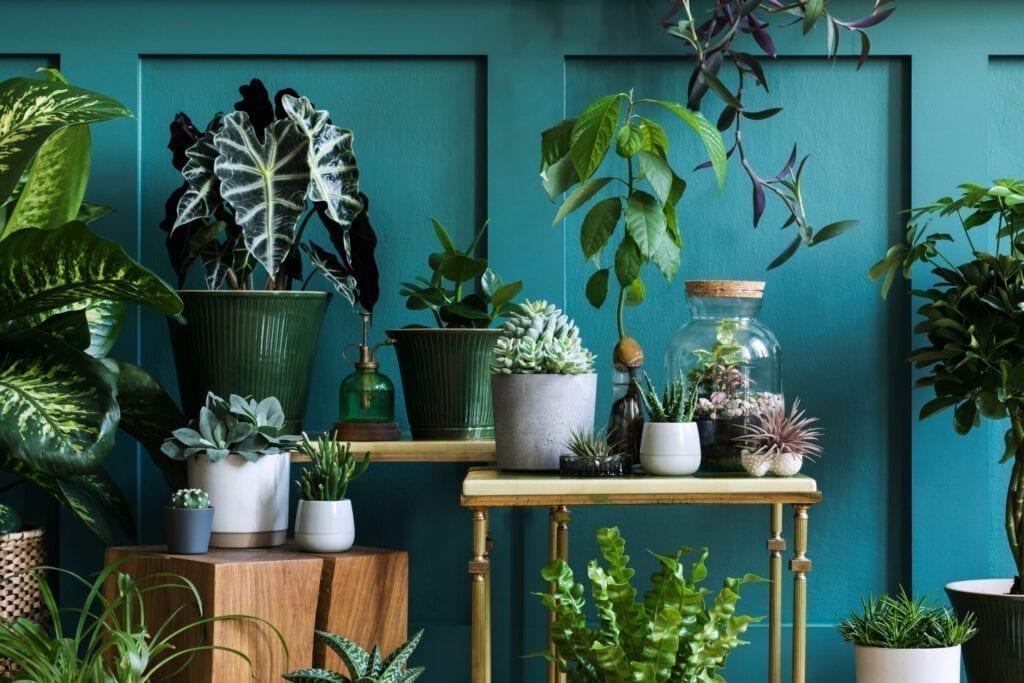 garden room 2021 trend