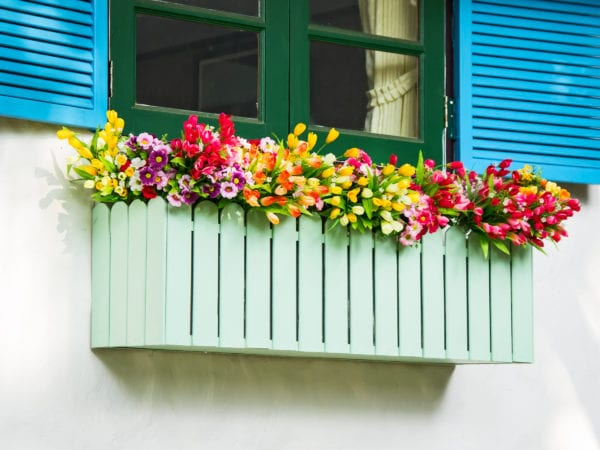 A basket of bright green flowers hangs on the window