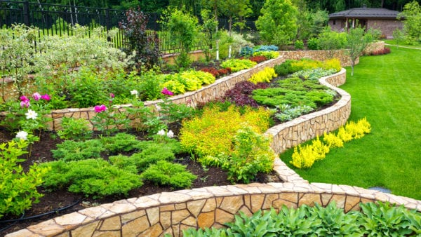 25 Cheap Landscaping Ideas That Fit Your Budget Mymove