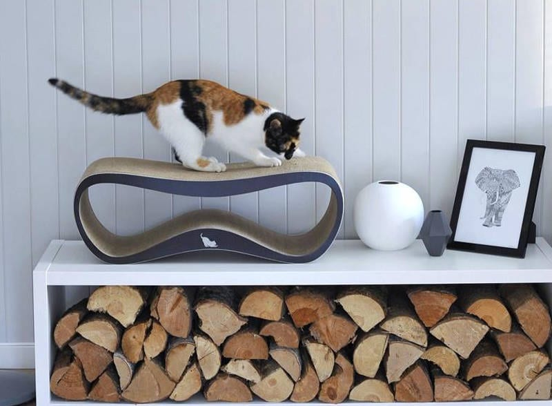 modern cat products - freshome.com
