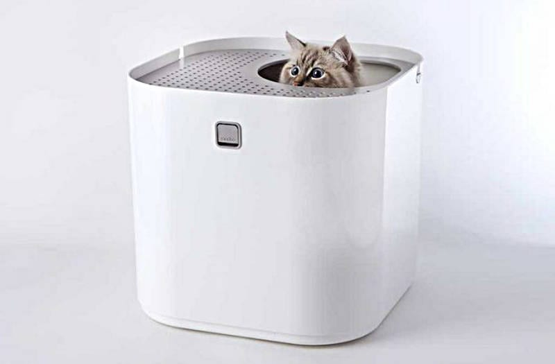 cool litter boxes - freshome.com