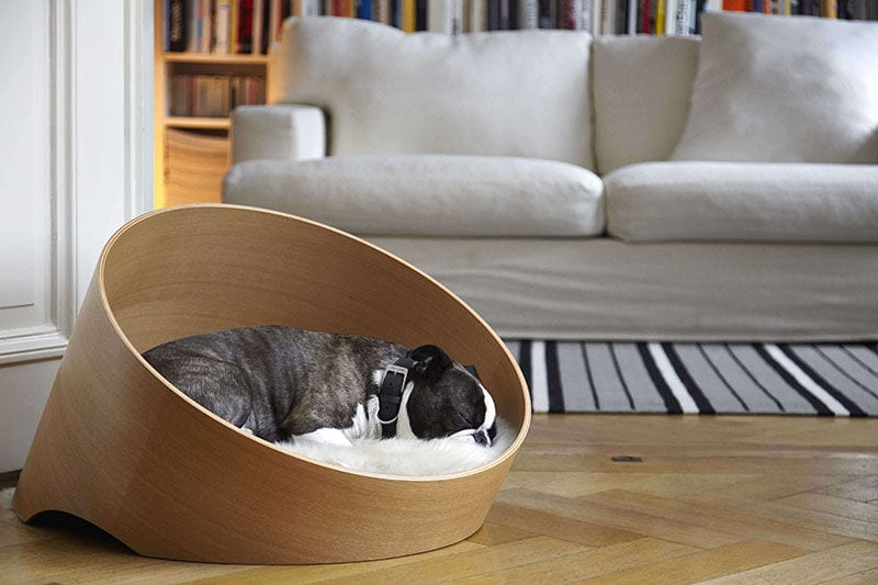 modern pet products - freshome.com