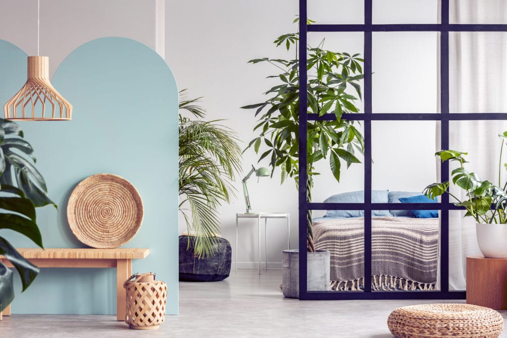 Urban jungle in bright white and blue bedroom interior with partition