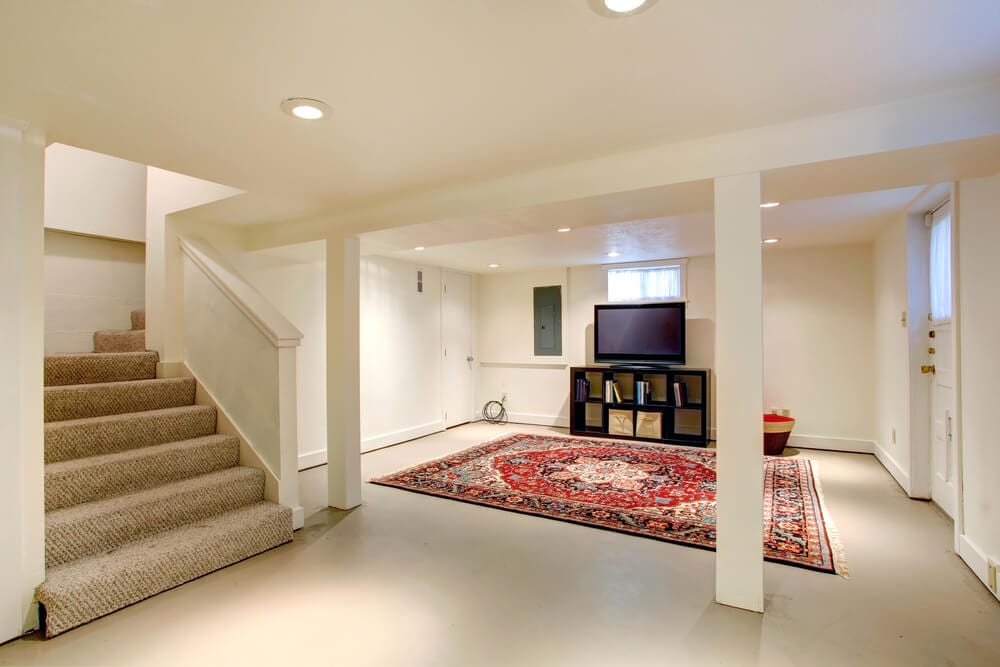 Organized Basement Rug and TV