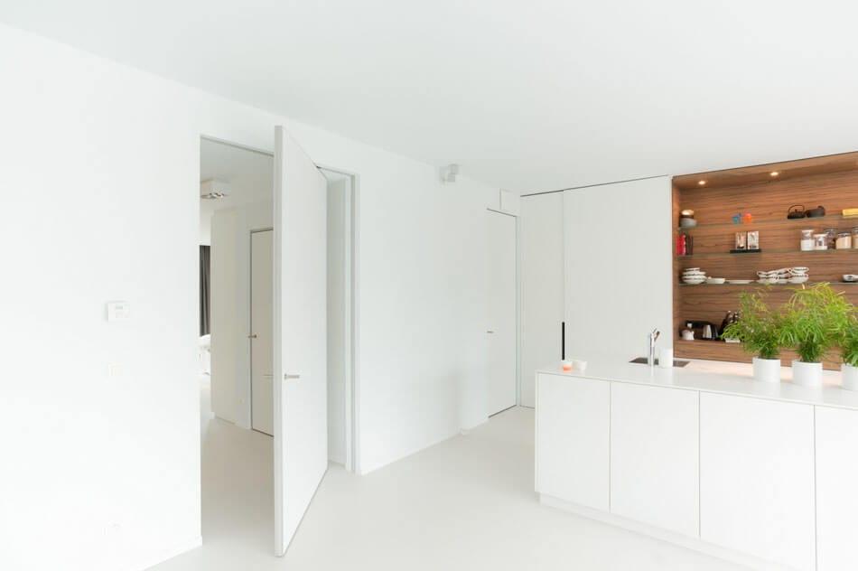 Room Dividers pivoting doors by Anyway Doors (15)