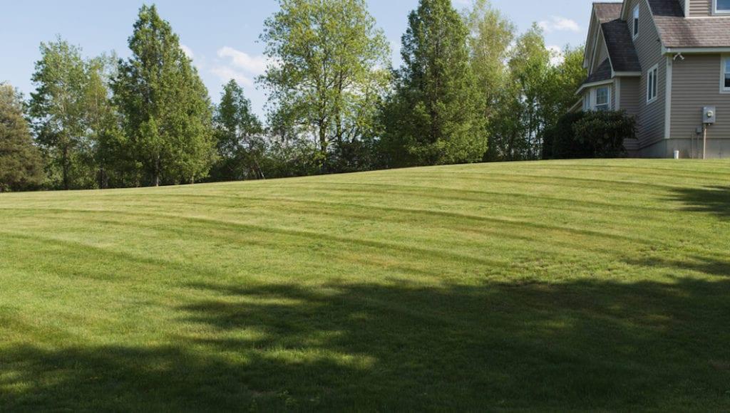 Stripe Your Lawn Subtle Style