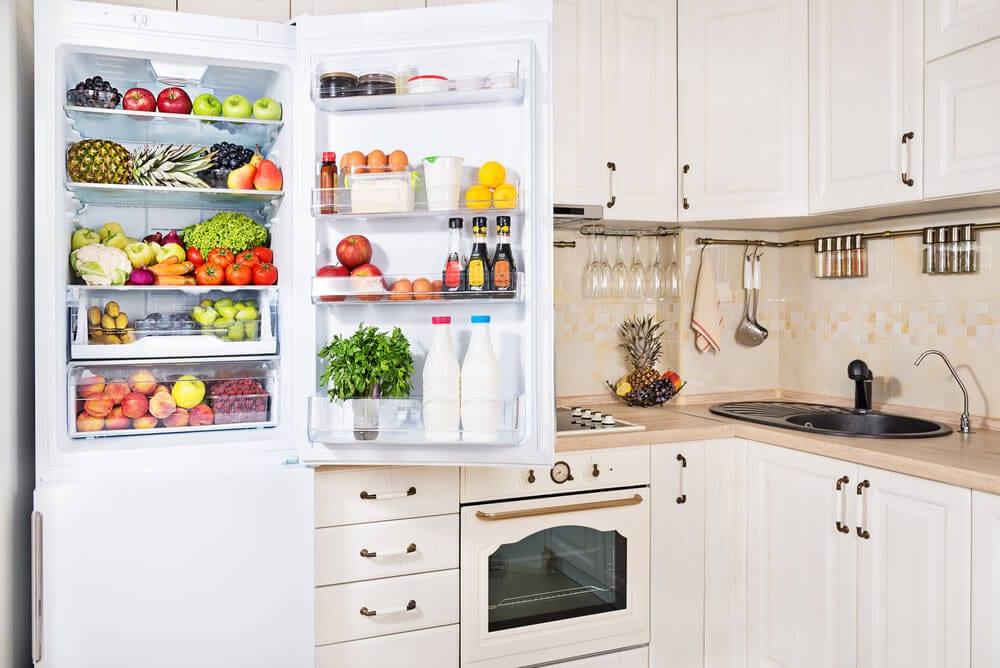 Sustainable Kitchen Refrigerator Shot