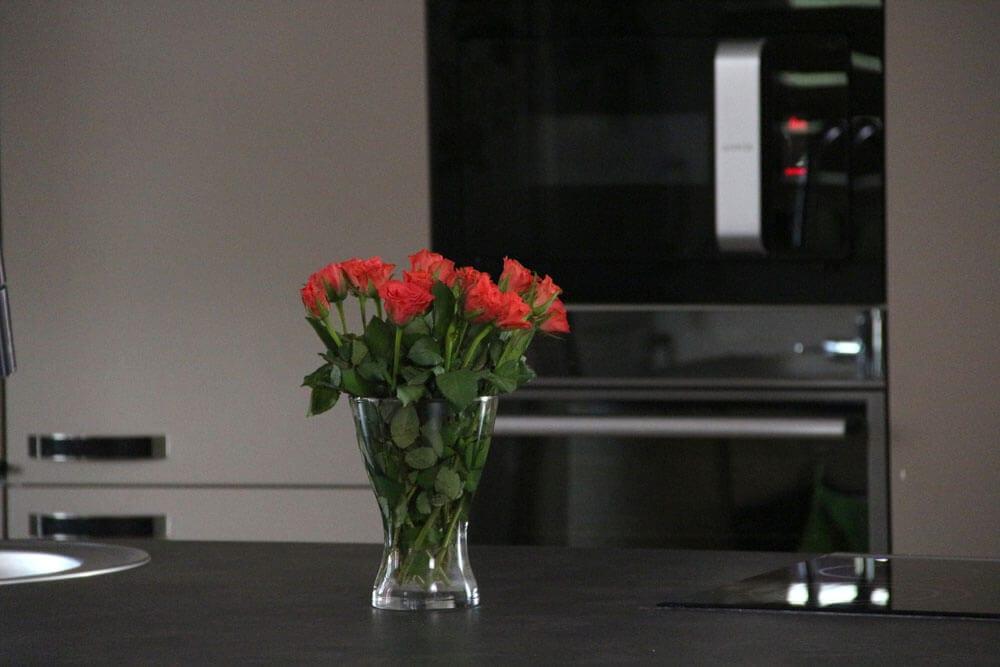 TV studio kitchen for Oana Grecea by Euphoria Kitchens Hall (12)