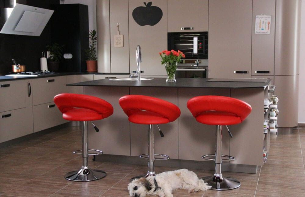 TV studio kitchen for Oana Grecea by Euphoria Kitchens Hall (5)