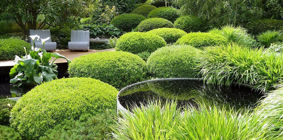 bushy_green_yard_with_ponds_and_seating_area