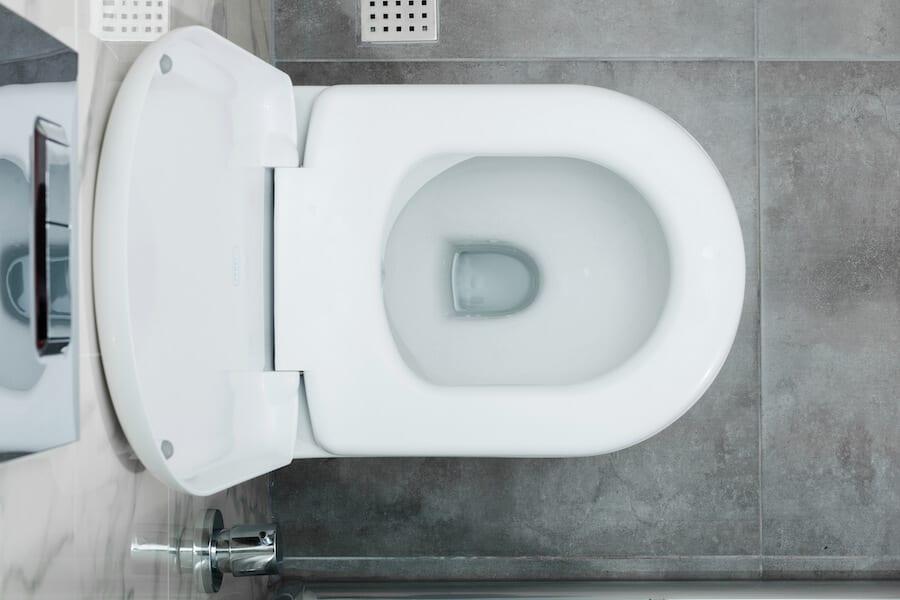 clogged toilet - toilet bow