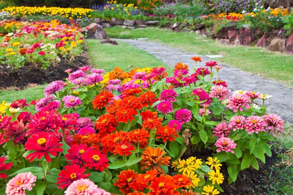 garden color palette - analogous