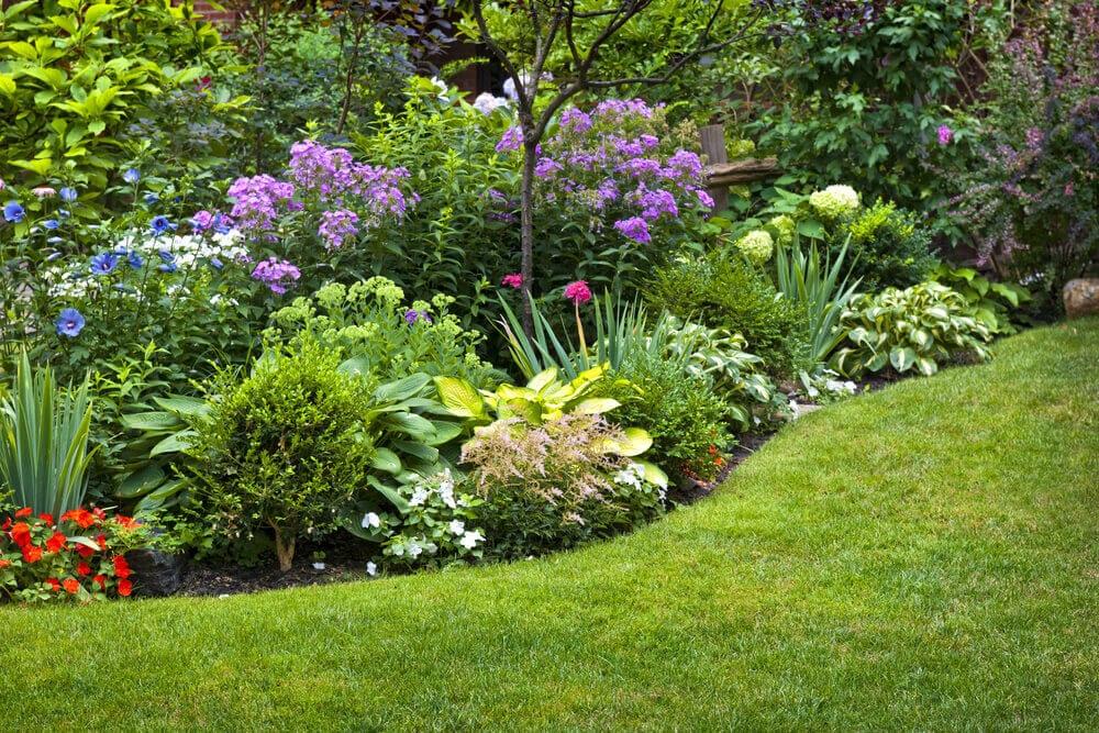 garden color palette - multicolor