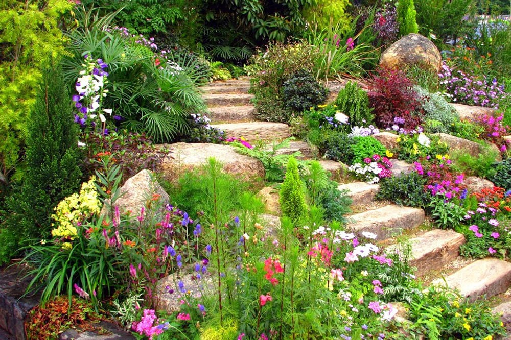 perennials_surrounding_staircase_in_yard